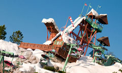 Summit Plummet at Disney Blizzard Beach Water Park