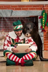 SeaWorld Orlando Christmas Story teller