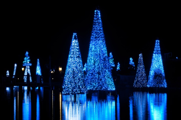 SeaWorld Christmas Decorations