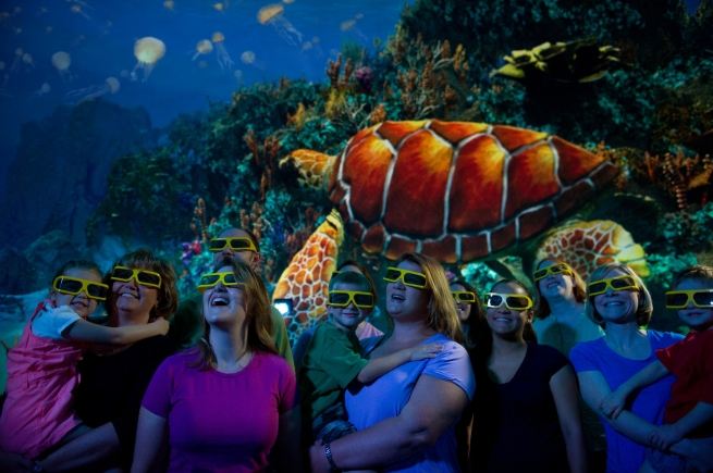 orlando_seworld_turtle_tank_3D