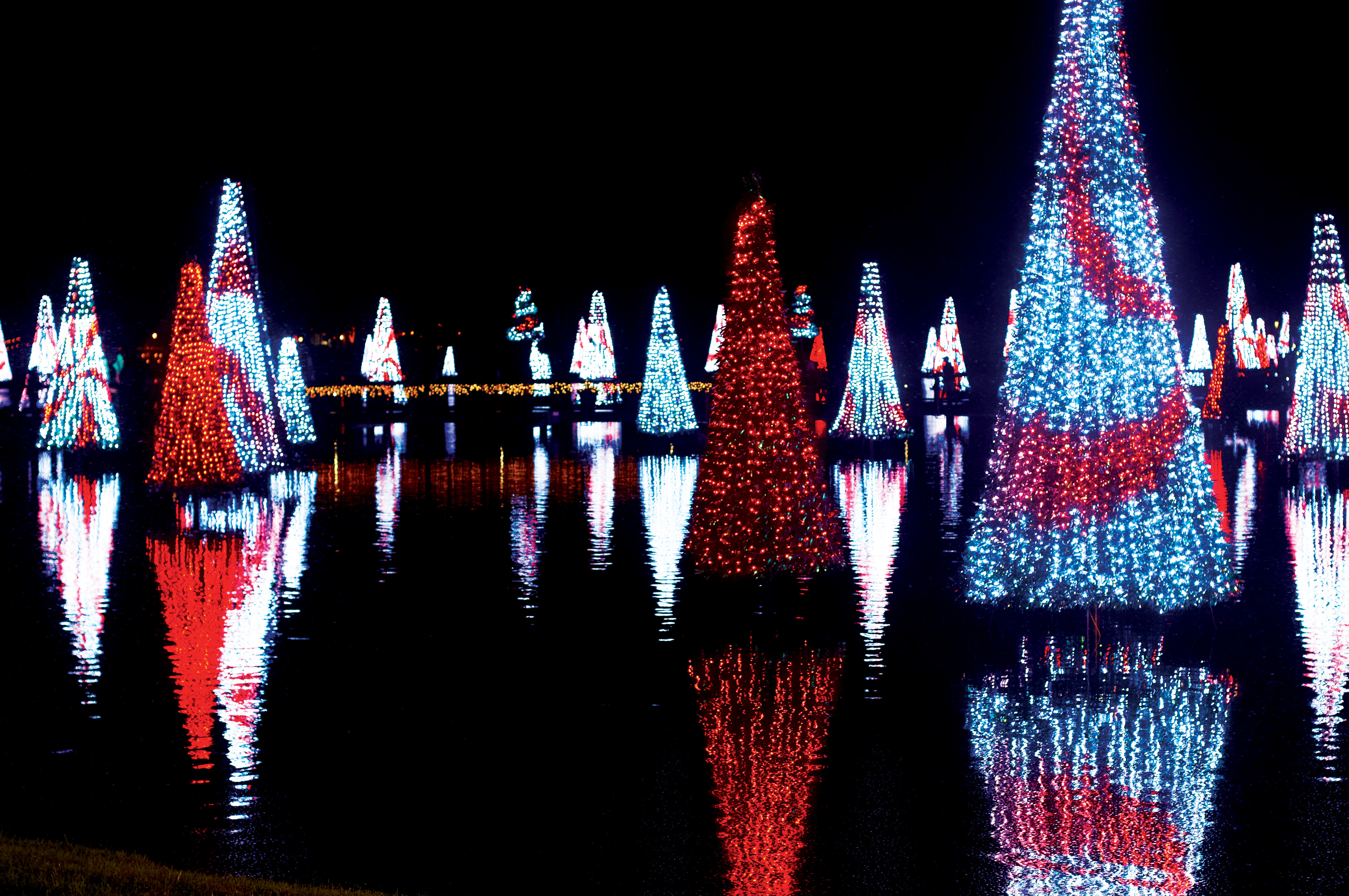 Christmas at SeaWorld | Orlando Discount Tickets USA