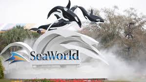 seawolrd