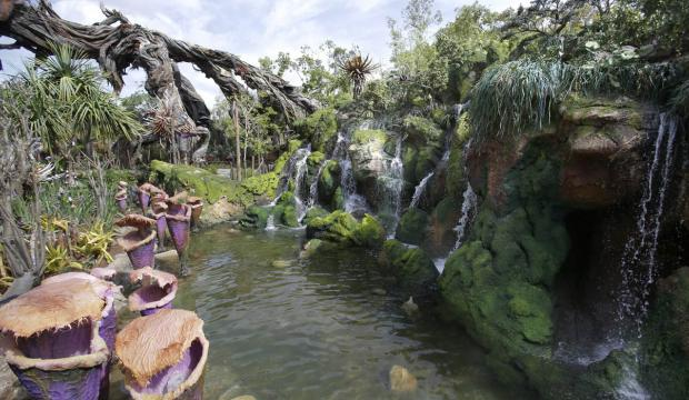 Disney Animal Kingdom On Numbers Has 2 Adicions With The Avatar Rides First One Is Flight Of Passage That Will Make Visitors Feel Like Theyre